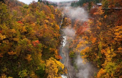 """温泉の滝に、地獄の景色まで! """"地熱のまち""""で体感する大自然のエネルギー"""