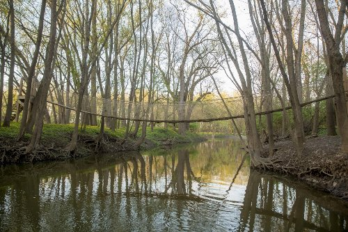 Scioto Grove Metro Park Is A Magical Wonderland You Need To Explore