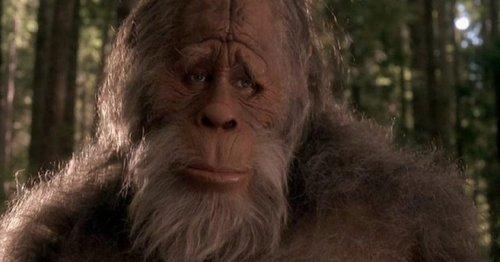 Oregon Hiker Shares Footage of Supposed Bigfoot Sighting