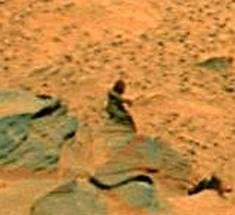 Opinion | Life on Mars?: Searching for Signs in the Cosmos, and on Earth