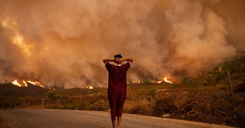 Humanity 'Way Off Track': WMO Says Atmospheric Carbon at Level Unseen in 3 Million Years