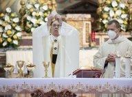 A Living Catholic Tradition