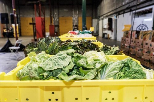 North Island-Powell River MP introduces bill to combat food waste - Comox Valley Record