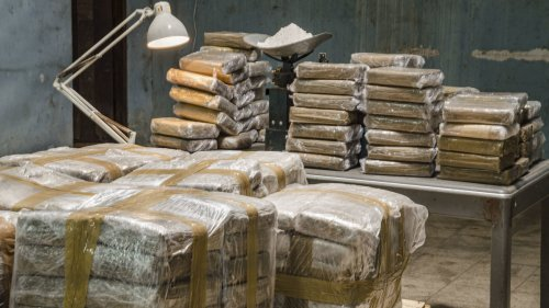 Border Patrol Seizes Over $1 Million Worth of Cocaine After It Washes up on Florida Beach