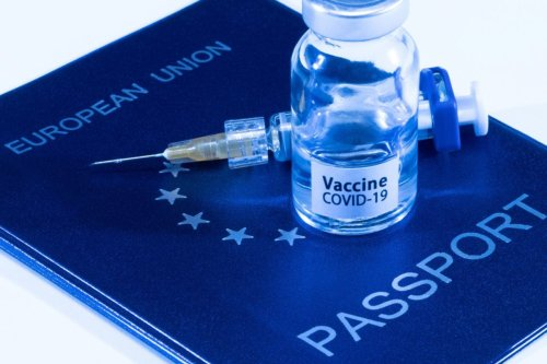What Is a Vaccine Passport? The Future of Travel, Explained