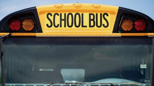 Alabama Mom Arrested After Allegedly Getting on School Bus and Fighting Her Kid's Suspected Bully