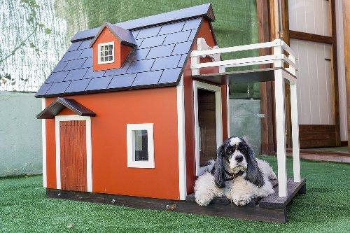 Las mejores casetas de exterior para perros de todos los tamaños