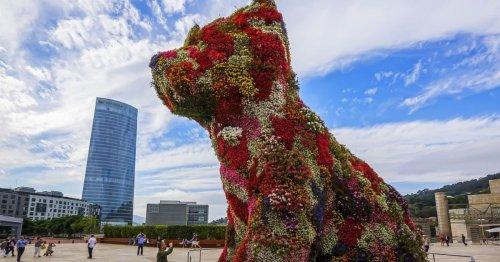 100 000 euros pour sauver Puppy, le chien géant de Jeff Koons   Connaissance des Arts