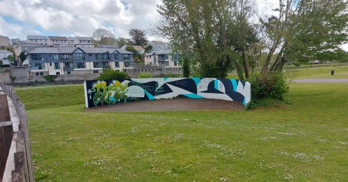 Rude and offensive graffiti near play park causes anger