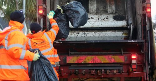 Council's bin collector illegally exported wigs and dirty nappies
