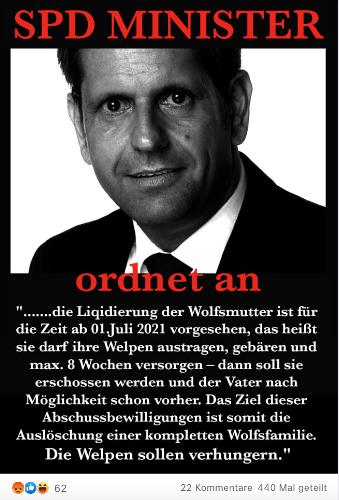 """Niedersachsen: Nein, Olaf Lies hat nicht die """"Auslöschung einer kompletten Wolfsfamilie"""" angeordnet"""