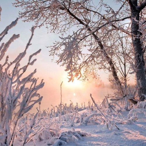 Sibirische Eisluft kommt: Frosthammer schellt Deutschland