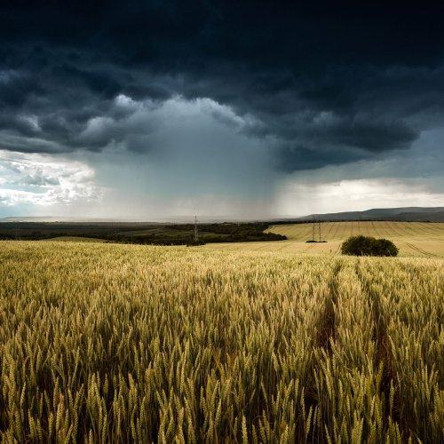 Wetter-Hammer im August: Experten warnen!
