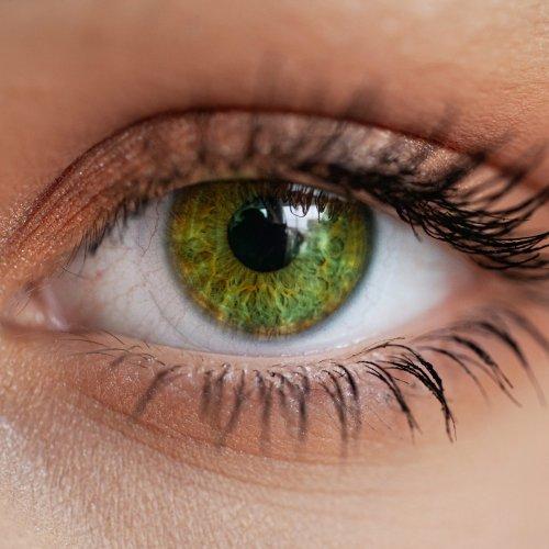 Die unglaubliche Wahrheit über grüne Augen