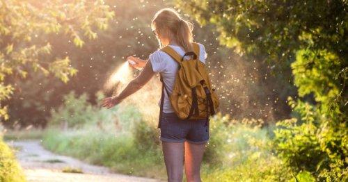 8 astuces pour éloigner les moustiques