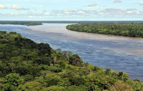 Necropolitics in the Amazon - CounterPunch.org