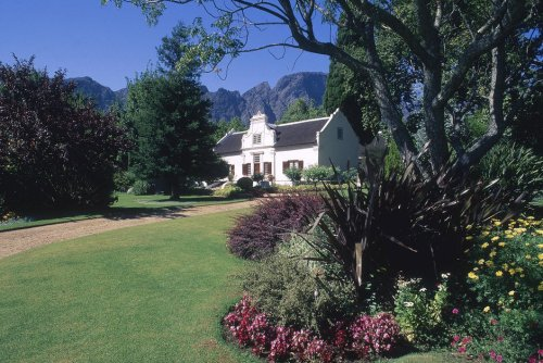 Insécurité. En Afrique du Sud, les riches assurent désormais les arbres de leur jardin