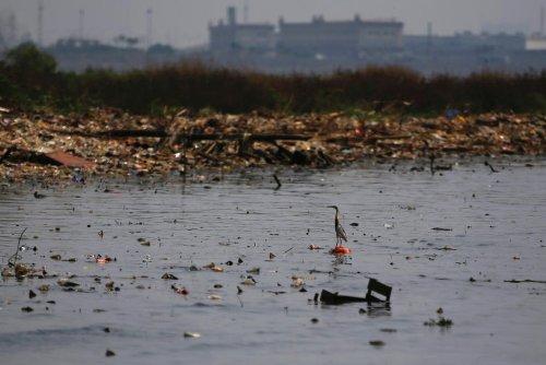 Indonésie. Le naufrage de Jakarta annoncé pour 2030