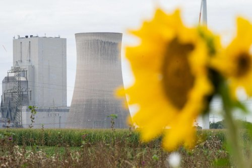 Programmes. Élections en Allemagne : aucun parti n'est à la hauteur des objectifs climatiques