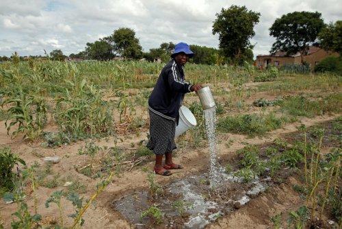 Climat. Les migrants climatiques du Zimbabwe coincés entre sécheresse et cyclones
