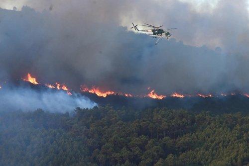 Analyse. Qui se cache derrière les incendies en Italie?