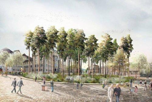 Allemagne. La ville de Cassel, sa place des Frères-Grimm et un projet en forme de pomme empoisonnée
