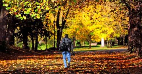 Summer ends tonight - autumn equinox 2021 and all you need to know