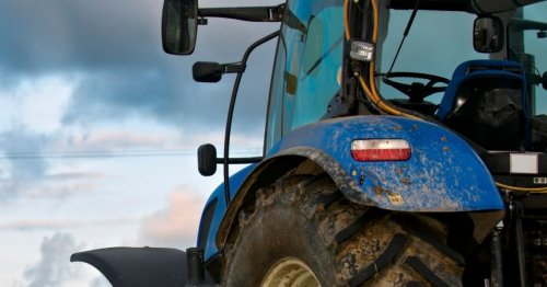 Brexit and Covid mean farmer has to throw away acres of crops