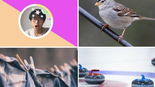 5 Crazy Science Stories That Flew Under Everybody's Radar