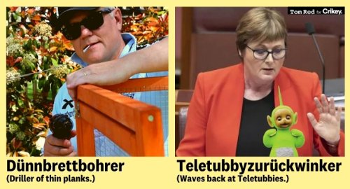 From Arschgeige to Jeansbügler, the Germans have a word for every Australian pollie