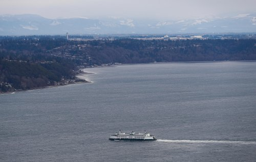 Puget Sound can only handle so much pee in the water