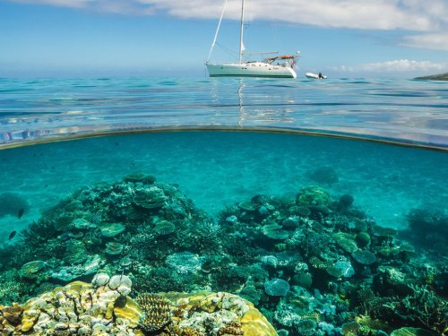 Sail Green: Sustainable Escapes