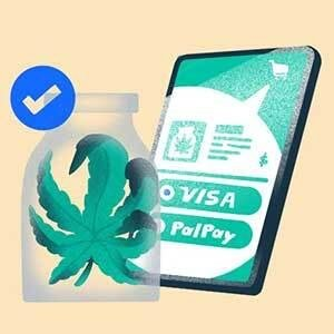 Cannabis Startups Navigate Regulations, Lack Of Capital To Plant Industry Seeds