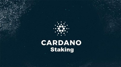 Cardano Staking: What are the benefits? | Cryptopolitan