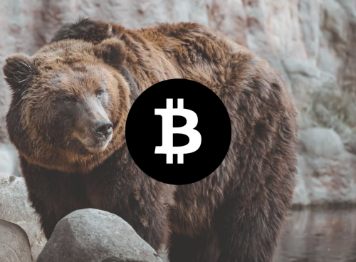 Bitcoin price prediction: Bitcoin spikes to $51,500 overnight, set to retrace some of the loss today | Cryptopolitan