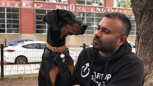 Montreal man loses apartment over emotional support Doberman; lodges human rights complaint