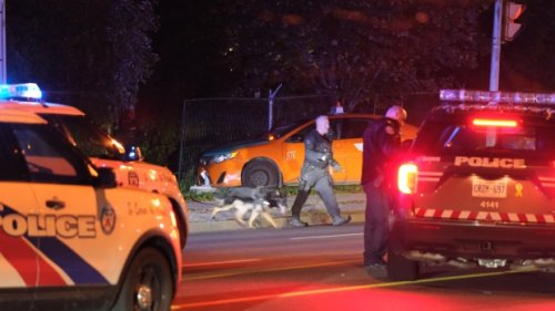 Shooting in Scarborough leaves taxi driver dead