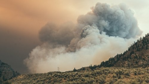 B.C. wildfires: Thousands remain under evacuation order as more than 250 blazes still active