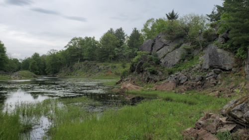 Area north of Kingston, Ont., now protected land, conservancy group says