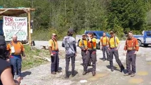 'Go home and collect your welfare': Fight between B.C. anti-logging activists, forestry workers caught on video