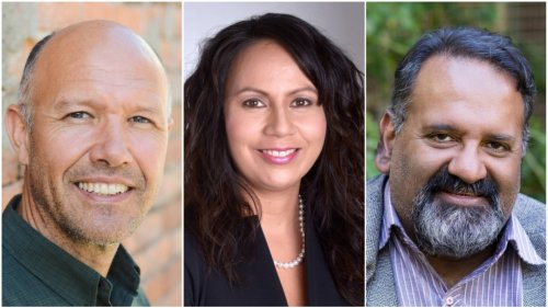 Local Green candidates banking on steady support in B.C., despite slight dip nationally