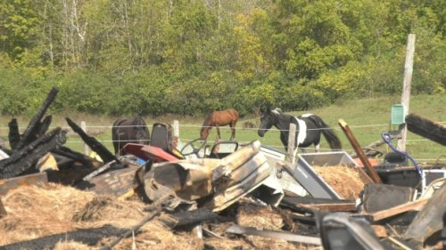 50-year-old horse farm in Smiths Falls, Ont. destroyed by fire