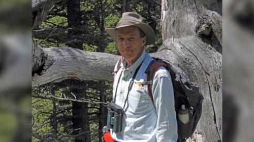 Wildlife expert 'infuriated' by coverage of hiker's grizzly encounter