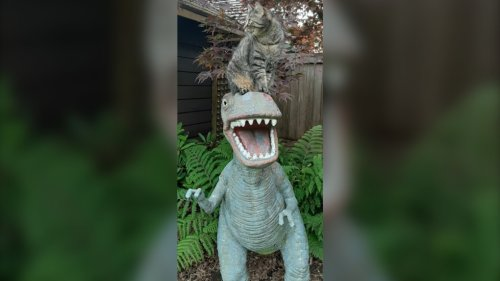 80-pound dinosaur statue with Expo 86 history stolen from Metro Vancouver backyard