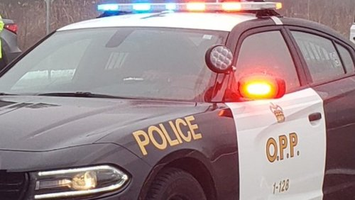 Two charged after weapon pointed at victim near North Bay