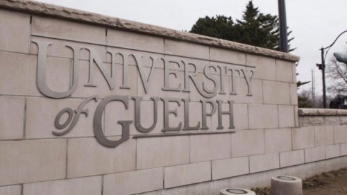 COVID-19 vaccines required for U of G varsity athletes