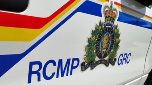 Firearm pointed at Mountie during traffic stop: RCMP