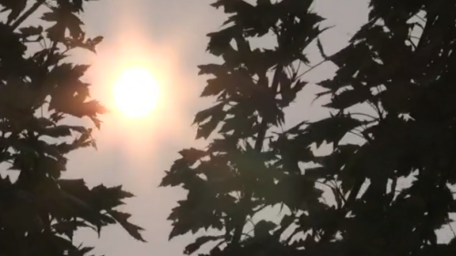 Smoke from forest fires causing air quality concerns in Muskoka