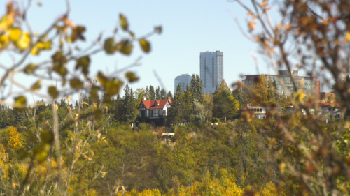 Edmonton home sales and pricing cools, luxury market continues strong