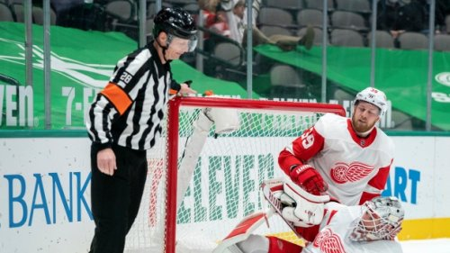 Petition calling for NHL ref's firing gets over 27,000 signatures